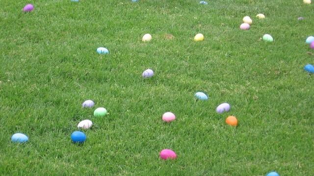 egg-hunt-1324340-640x480