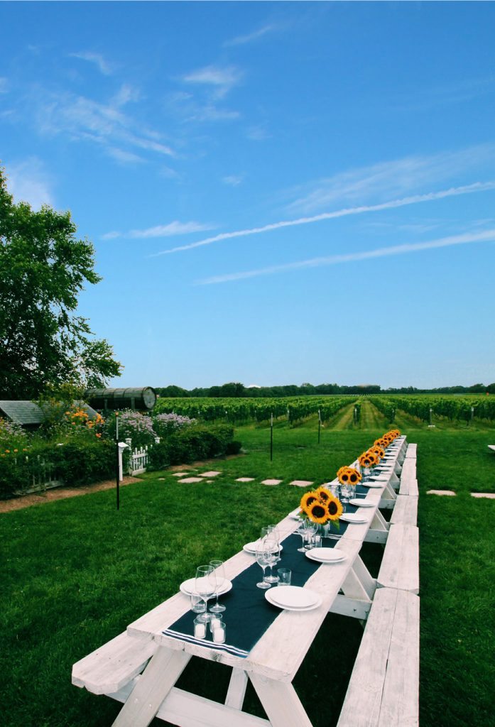 Enjoy dinner al fresco on one of Long Island's vineyards