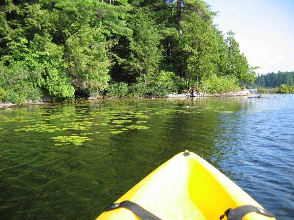 Kayaking on Shelter Island